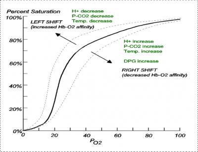 Do We Understand Oxygenation?